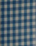 Gingham Blue