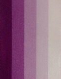 Spectrum Purple